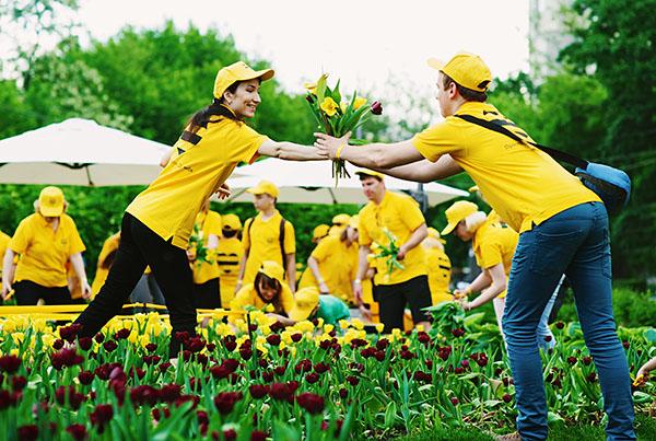 Билайн собирает урожай @Парк Красная Пресня